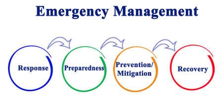 Components of Emergency Management Process Фото со стока