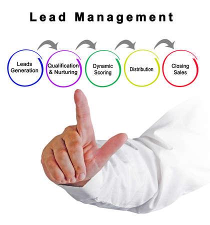 Five Components of  Lead Management Фото со стока