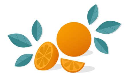 Orange citrus fruit with orange slices and leaves. Vector illustration isolated on white background