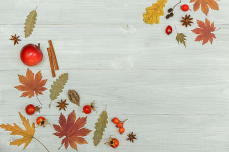 Autumn background. Pattern of dried leaves, rosehip berries, anise, cinnamon and apple. Top view On a light wooden background, with space. 写真素材