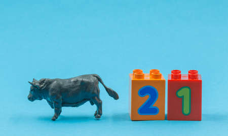 New year's symbol, toy bull and cubes with numbers two and one on a blue background, horizontally with space for text. Symbol of the Eastern new year