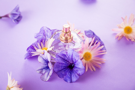 Bottle of perfume with flowers on purple background Stock Photo