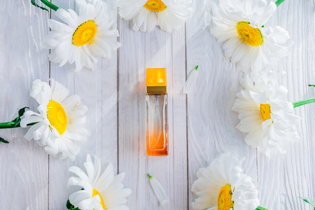 Bottle of perfume with camomile on white background Imagens