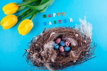 Happy Easter. Nest with eggs and yellow tulips