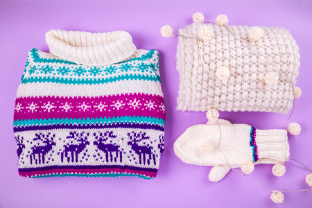 Winter female outfit. Set of clothes and accessories on purple background