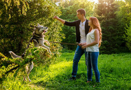 A young couple walking and playing with husky dog in summer park