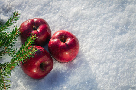 Red apples with fir branches in snow in the morning Stock Photo