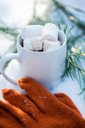 Cup of coffee with marshmallow in winter forest Фото со стока
