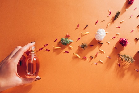 Woman holding bottle of perfume with ingredients. Fragrance of flowers, spices, herbs and fir tree Reklamní fotografie