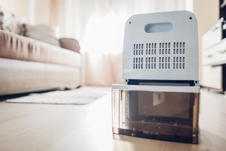 Prozess des Wechselns des Wasserbehälters des Luftentfeuchters zu Hause. Feuchtigkeit in der Wohnung. Moderne Technologie