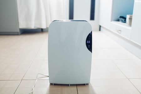 Dehumidifier with touch panel, humidity indicator, uv lamp, air ionizer, water container works at home on kitchen. Air dryer Archivio Fotografico