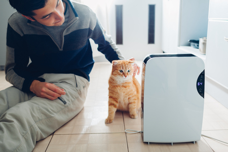 Dehumidifier with touch panel, humidity indicator, uv lamp, air ionizer, water container works at home while man stroking his cat. Air dryer Banque d'images - 115936016