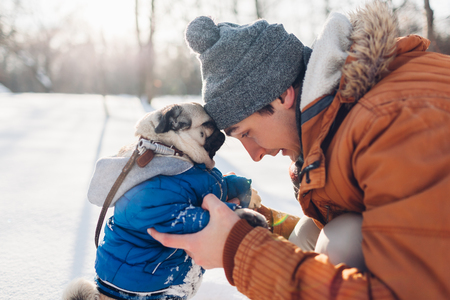 Pug dog walking on snow with his master. Puppy wearing winter coat. Man hugging his pet in winter forest. Clothes for animals