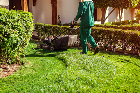 Man mowing the grass with a lawn mower by hotel. Worker cuts the lawn in summer garden. Stok Fotoğraf