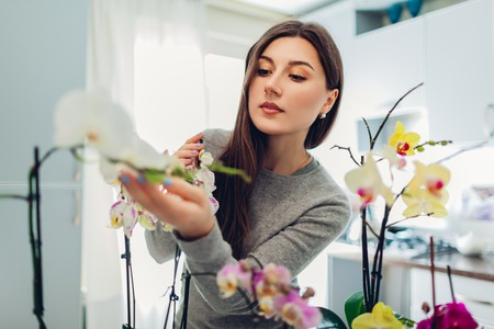 Woman checking her orchids on kitchen. Happy housewife taking care of home plants and flowers.