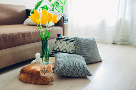 Details of modern living room interior. Tatami straw cushion decorated with flowers and pillow on the floor with cat lying by