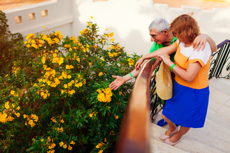 Senior couple admiring blooming yellow flowers in hotel garden. People enjoying summer vacation. Traveling concept Reklamní fotografie