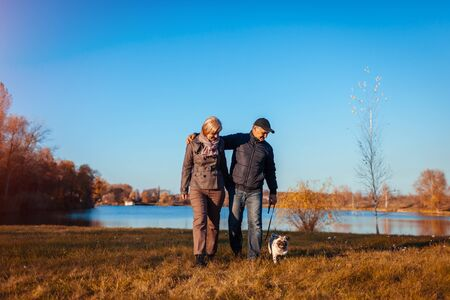 Senior couple walking pug dog in autumn park by river. Happy man and woman enjoying spending time with pet outdoors Banco de Imagens