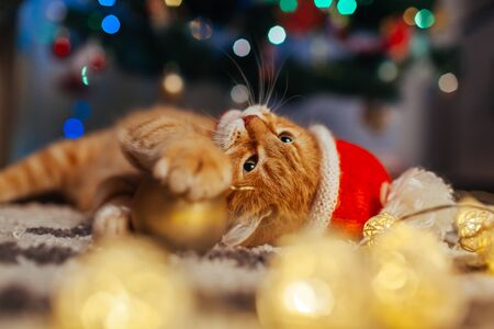 Ginger cat wears Santas hat under Christmas tree playing with lights and ball at home. Christmas and New year concept