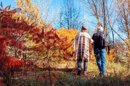Fall activities. Senior family couple walking in autumn park. Man and woman enjoying nature outdoors Archivio Fotografico