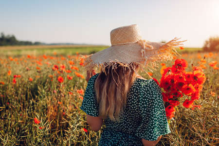 Woman holding bouquet of poppies flowers walking in summer field. Young girl in straw hat enjoys blooming landscape