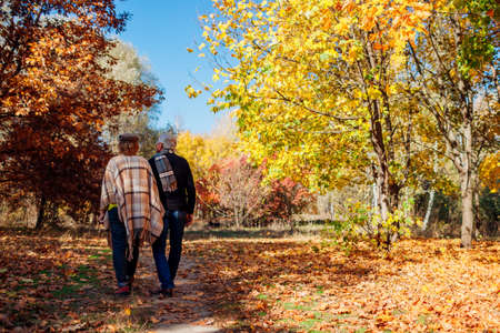 Fall activities. Senior family couple walking in autumn park. Middle-aged man and woman hugging and chilling outdoors. Archivio Fotografico
