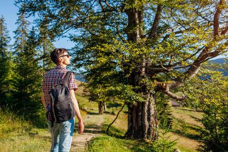 Man tourist hiker walking through forest in Carpathian mountains enjoying landscape view. Traveling in summer Ukraine.