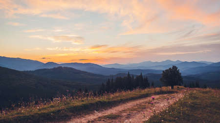 Beautiful sunset in Carpathian mountains. Summer ukrainian landscape. Dusky sky above wild nature with path surrounded with flowers