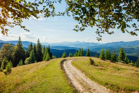Beautiful view of Carpathian mountains. Summer ukrainian landscape. Blue sky above wild nature with forest path. Tourism