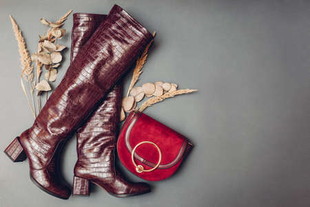Boots, stylish burgundy reptile skin leather shoes for women with handbag. Female fashion. Footwear with purse. Trendy accessories on grey background. Space