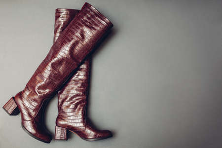 Shoes, stylish burgundy reptile skin leather boots for women. Female winter fashion. Trendy footwear on grey background. Space Фото со стока