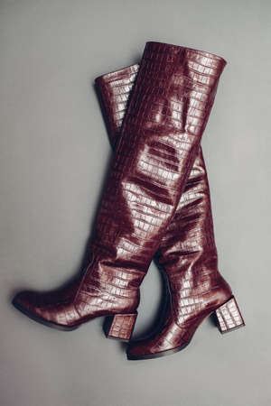 Over the knee boots, stylish burgundy reptile skin leather shoes for women. Female fashion. Trendy footwear on grey background.