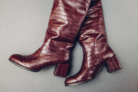 Shoes, stylish burgundy reptile skin leather boots with square heels for women. Female spring fashion. Trendy footwear on grey background.