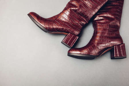 Square heels boots, stylish burgundy reptile skin leather shoes for women. Female spring fashion. Trendy footwear on grey background. Space