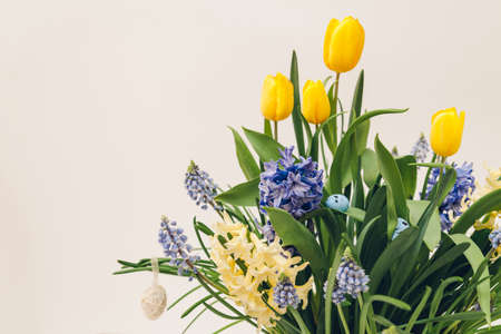 Easter composition of spring flowers with eggs. Yellow tulips, hyacinths, blue muscari grow in pot on white background. Holiday decoration.