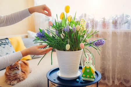 Easter home decor. Woman hangs eggs on spring blooming flowers in pot. Interior holiday design on table by bunny.