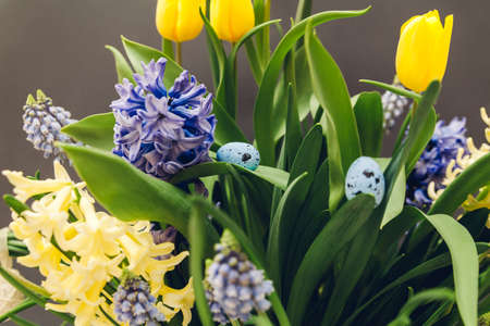 Easter decor of spring flowers with eggs. Bouquet of yellow tulips, hyacinths, blue muscari on grey background. Holiday decoration.
