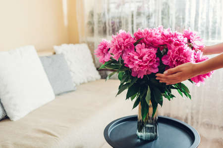 Woman holding bouquet of peonies in vase at home. Pink blooms put on coffee table. Interior and summer decor Archivio Fotografico
