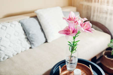 Interior and home decor. Fresh pink lily flowers put in vase in living room by couch. Bouquet of blooms on coffee table