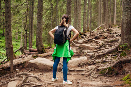 Woman hiker walking through mountain forest path surrounded with roots in Carpathians. Traveler with backpack resting. Trip to summer Ukraine