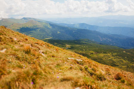 View of panoramic summer mountain landscape in Carpathians from Hoverla. Natural field meadow background with lakes