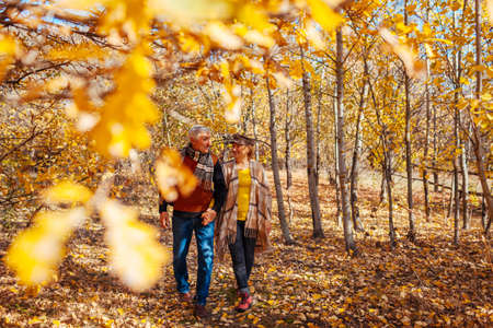 Fall season activities. Senior couple walking in autumn park. Retired man and woman holding hands outdoors enjoying nature