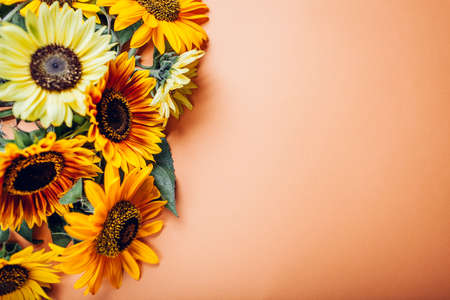 Bunch of yellow orange lime sunflowers on background. Group of fall summer flowers. Top view. Space Foto de archivo
