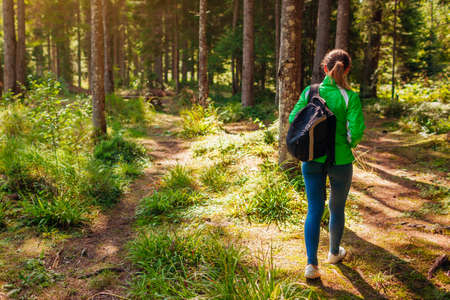 Woman tourist hiker walking through forest in Carpathian mountains enjoying landscape view. Traveling with backpack in summer Ukraine.