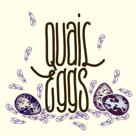 Lettering with quail eggs and feathers. Hand drawn sketch. Handwritten inscription. Cute print. Craft style.