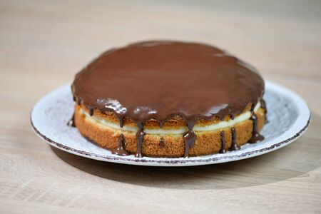 Homemade Chocolate Boston Cream Pie Фото со стока