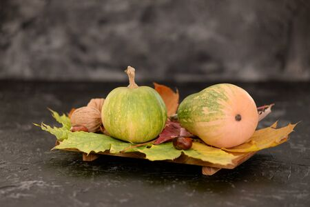 Two small pumpkins on fall leaves isolated on black backstage