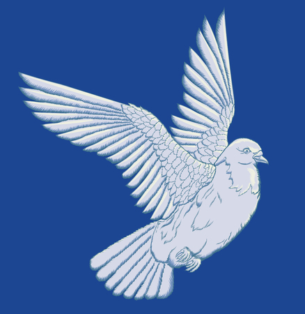 Flying dove. White vector turtledove on a dark blue background. A symbol of peace. Wedding bird. Vettoriali