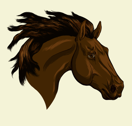 Painted portrait of Friesian horse with a long mane. Head of dark horse. Vector isolated on a beige background.