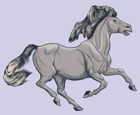 Colored illustration of a galloping gray horse.